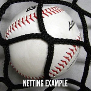 Baseball Net Close Up Example With Ball